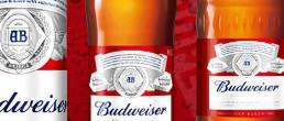 啤酒饮料领域使用冰河冷媒载冷剂