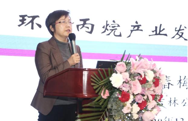 中石油吉林化工工程有限公司副总工程师 于春梅