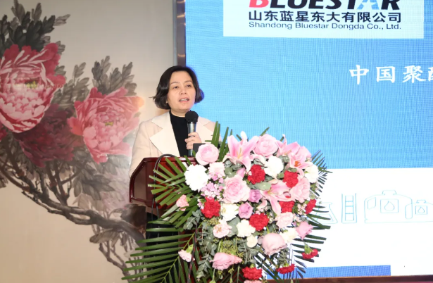 山东蓝星东大有限公司副总经理 马慧玲