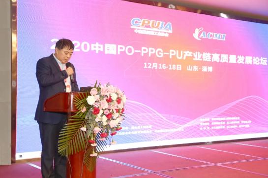 山东蓝星东大有限公司总工程师、总经理助理郭辉